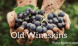 Old Wineskins