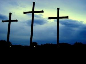crosseswebear