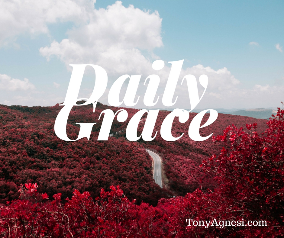 Daily Grace(2)